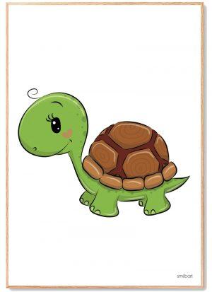 Skildpadde Plakat Børn